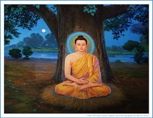 Anger management by G. Buddha